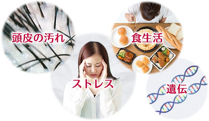 頭皮の汚れ・ストレス・食生活・遺伝