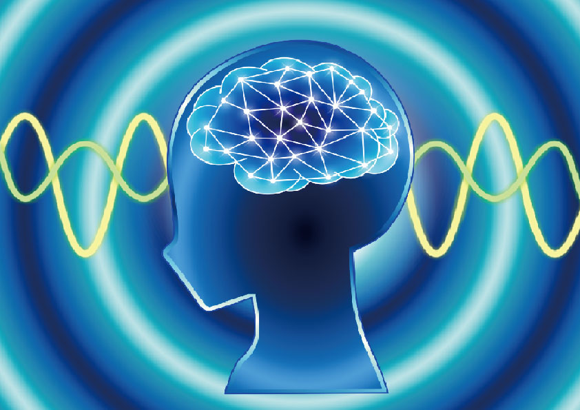 イネイト活性 脳jpg