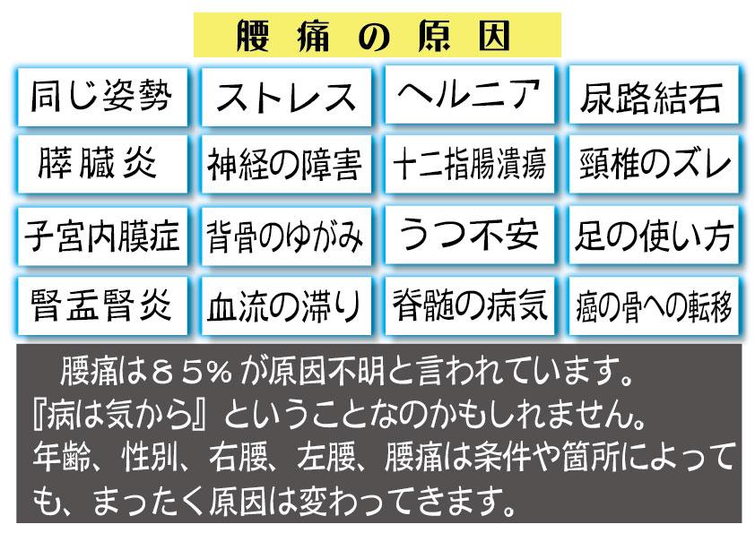 jp8腰の原因 HP