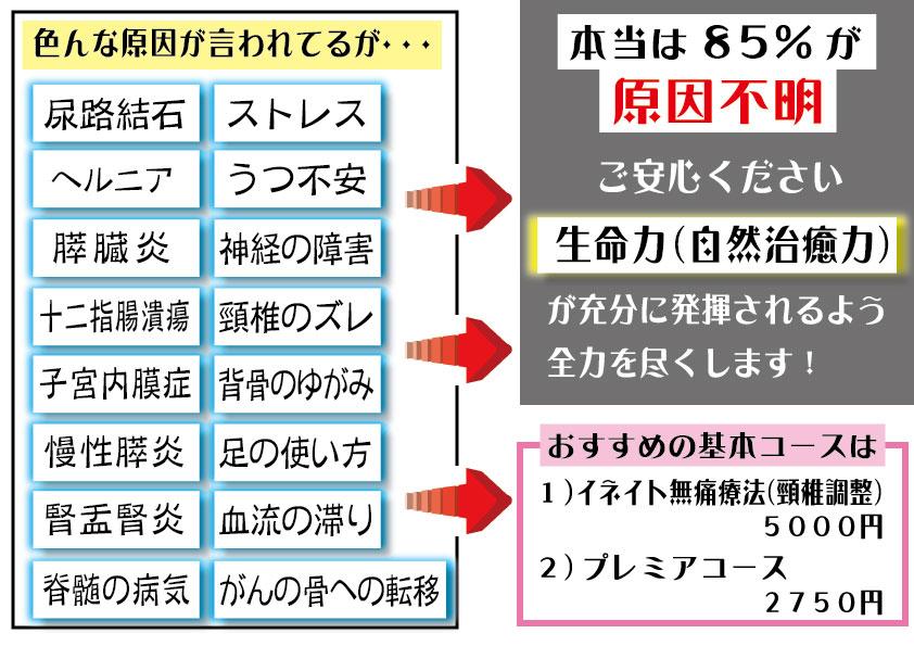 腰のオプション 症例jp